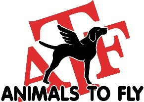 Animals To Fly logo